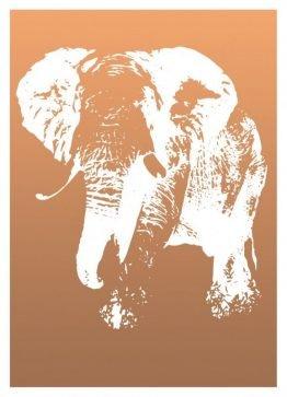 Plakater, dyreplakater, elefant, dekorationskort