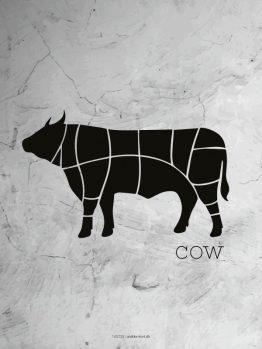 Plakater, illustration, ko, cow, 30x40 cm