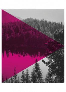 Pink skov