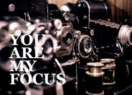 You are my focus