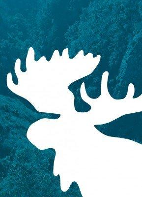 Elg i landskab - Julekort