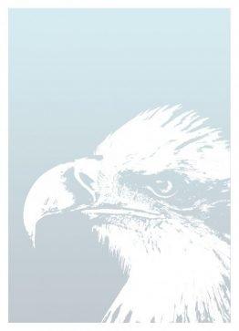 Shadow Eagle